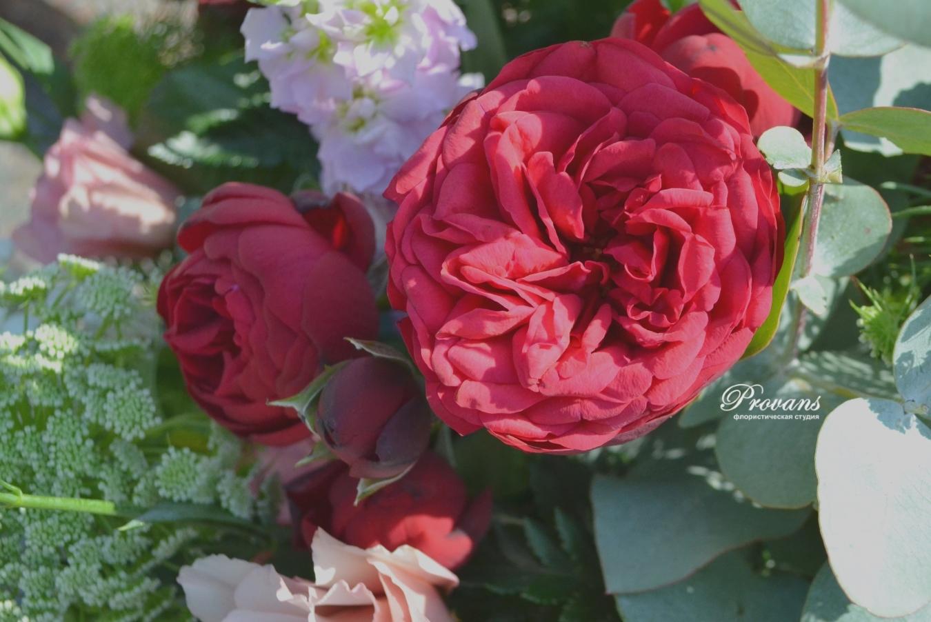 Букет на день рождения. Пионовидная роза, эустома, ягоды