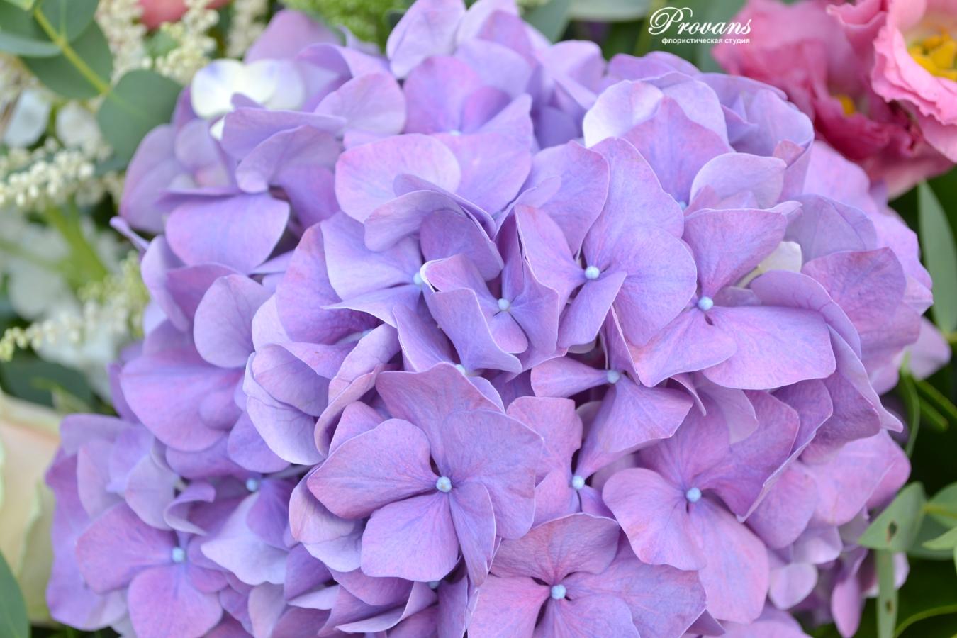 Корзина с цветами. Гортензия, пионовидная роза